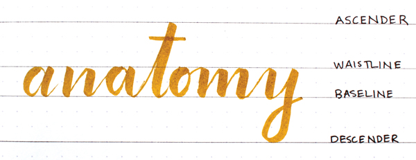 Anatomy of hand lettering